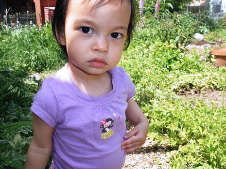 gardenlookblog.jpg