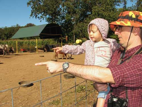 pumpkinbobshirtblog.jpg