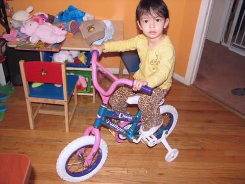 2ndbdbike2blog.jpg