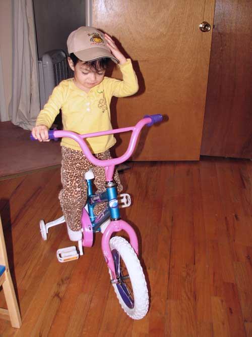 2ndbdbike3blog.jpg