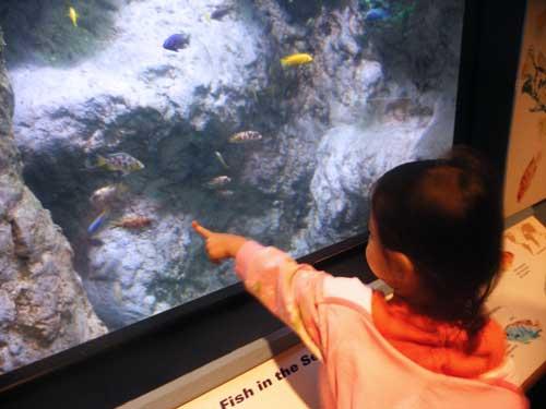 ppzoofishblog.jpg