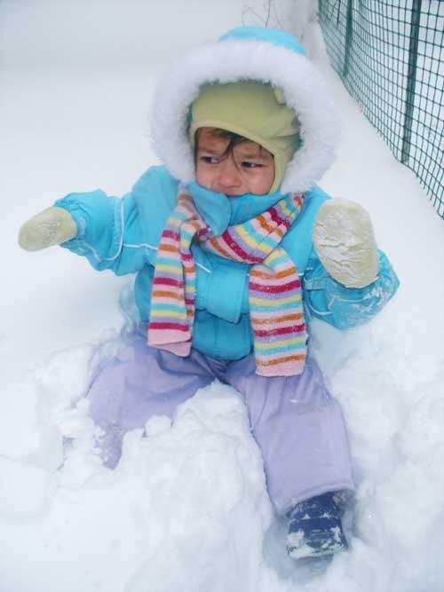 snowfallblog.jpg