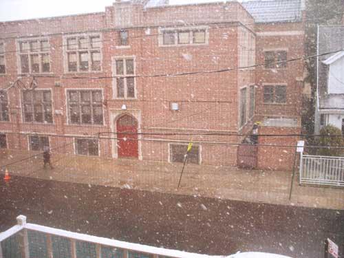 snowspringblog.jpg