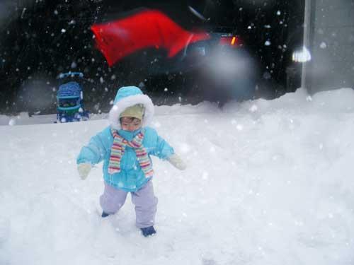 snowwalkblog.jpg