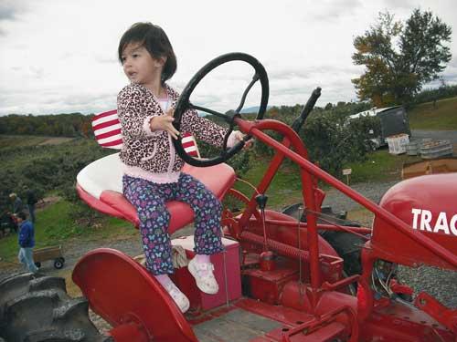 tractormac500.jpg