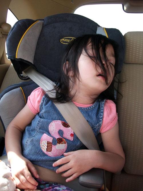 sleepcar.jpg
