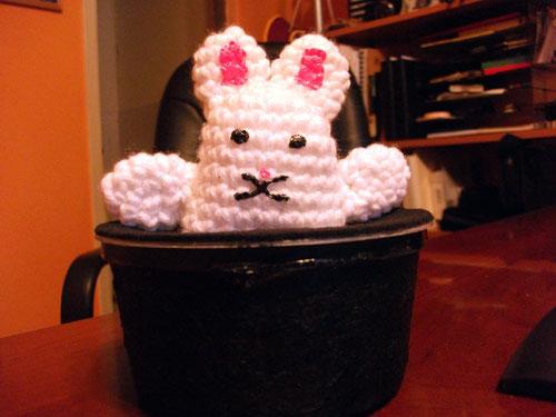 bunnyhole.jpg