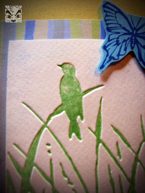 birdpseudolpcardclose.jpg
