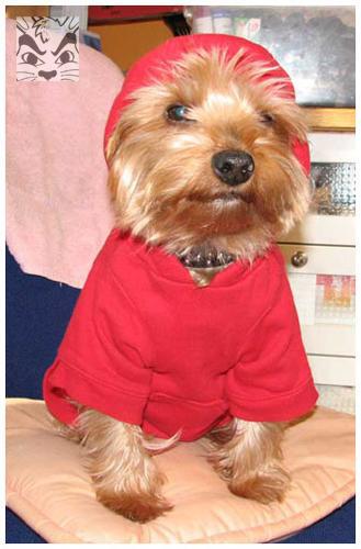 Red Hoodie!