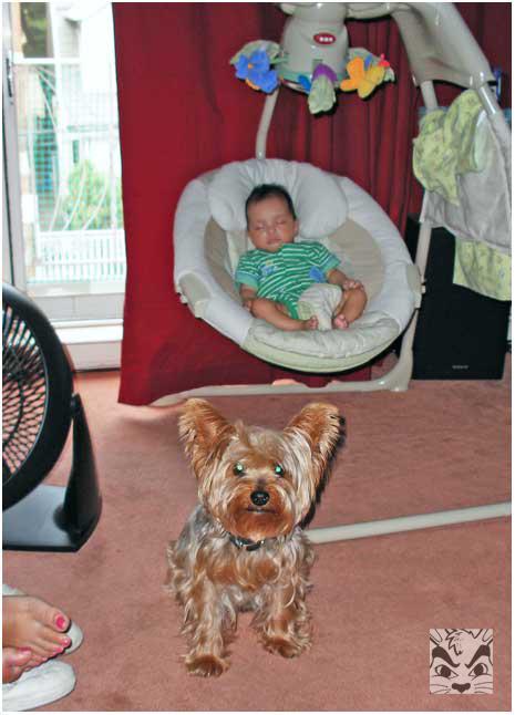 2007, guarding Sienna!